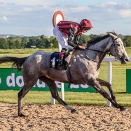 Fillies Double Up At Newcastle
